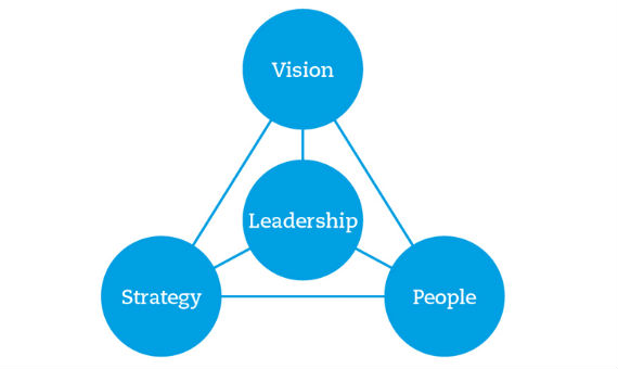Key components of a robust organisation: vision, strategy and people