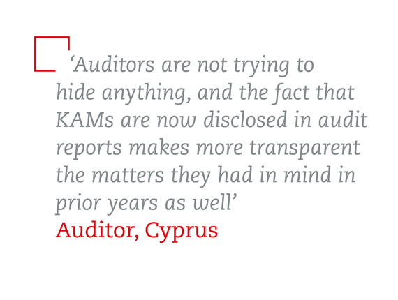 Interview quote from auditor in Cyprus